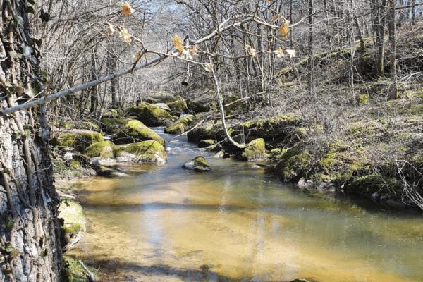 Paysages près de Moulin-Milan à Tancon, le Botoret 2